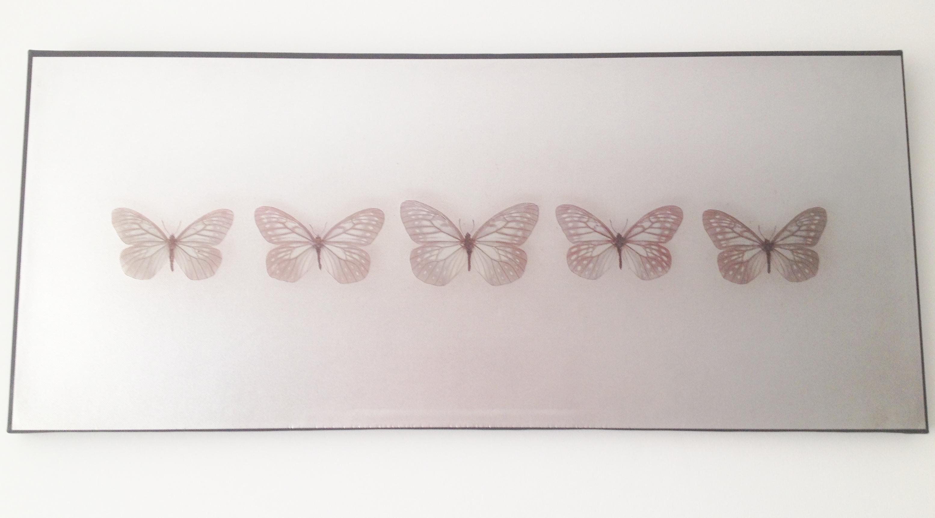 Butterfly Wall Art Its So Me Pretty Big Butterflies